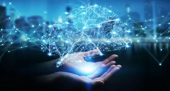 Pokerspelande AI systemet i mänsklig hjärna
